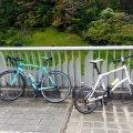 新しい自転車仲間の友人を引っ張り回すロガトカ