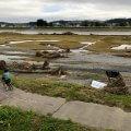 多摩川の2019年台風19号被害状況の視察